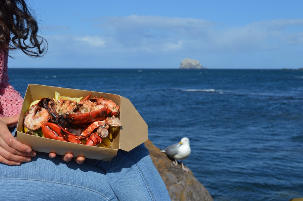 Lobsters caught and eaten off North Berwick. Sorry, but I didn't share it with the seagull...