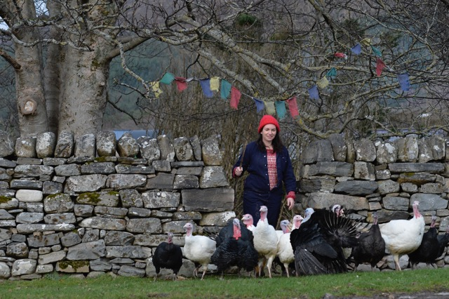Free-range turkeys raised with care by farmer Lucy Beattie